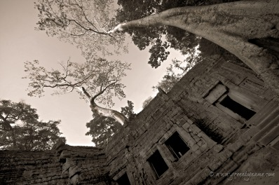 Preah Khan ~ On Tour with www.greenbyname.com